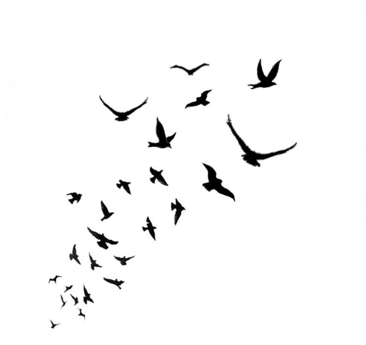 Ebony and Crows